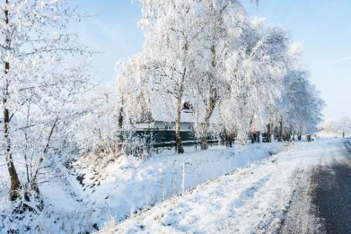 tbf170116_Dithmarschen im Winter_Rothe_003