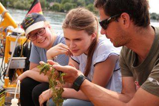 Die Gäste des Schiffs erkunden gemeinsam mit Wissenschaftlern die Biologische Vielfalt unter Wasser Foto (c): ALDEBARAN Marine Research & Broadcast