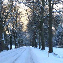 Wintereinbruch_IMG-20180225-WA0158_(C) by Holyfot