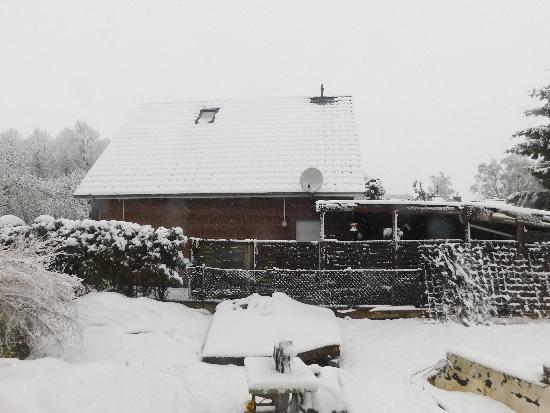 tbf290318_erneuit-Wintereinbruch_Freywald_002