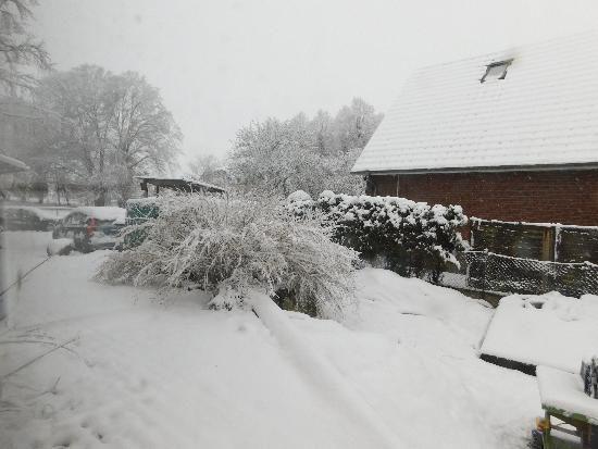 tbf290318_erneuit-Wintereinbruch_Freywald_003