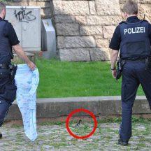 tbf160518_Luebecker-Polizei-Entenkuecken_Kroeger_009